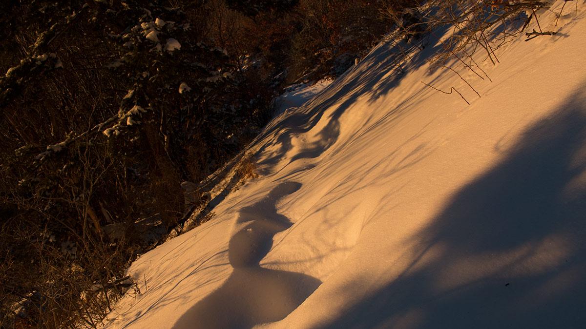Summit snowshoe, Sandias