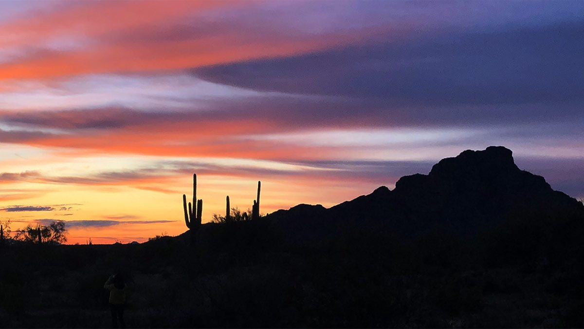 Sunset in the Desert, Tonto National Forest