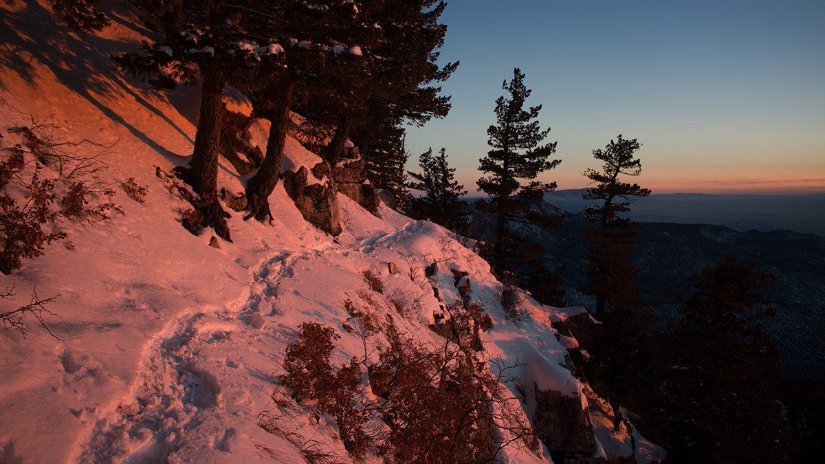 Summit snowshoe Sandias
