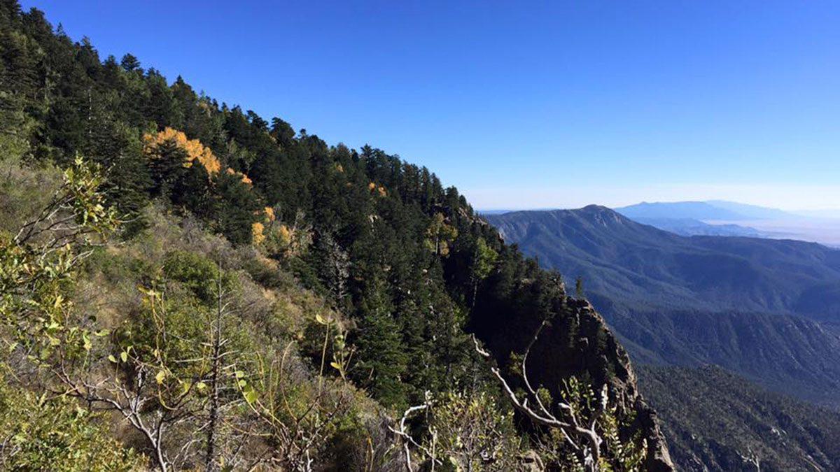Fall walk on the summit of the Sandias